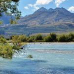 travel nursing in new zealand